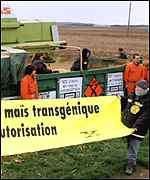 [ image: Greenpeace protest at GM maize in France in October 1998]