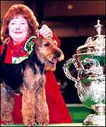 [ image: The report comes on day one of Crufts 99]