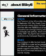 [ image: BSkyB is now trying to crack the Internet]