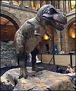 Die model inkorporeer die nuutste teorieë oor t-rex