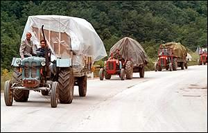 BBC News | Europe | Serbs flee amid reprisal fears