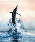 The Marlin represents the power and majesty of nature