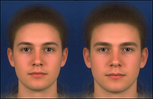 More masculine faces (right) have squarer shapes, heavier, straighter eyebrows and thinner lips