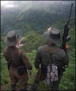 [ image: FARC rebels control the area where US plane crashed]