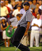 [ image: Woods sees a birdie putt roll by the hole at the 17th - but par proved enoughj]
