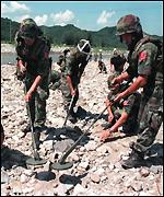 [ image: Korean soldiers search for landmines washed away by floodwaters]