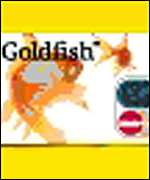 [ image: Centrica's portfolio includes the Goldfish credit card]