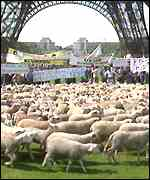 [ image: French farmers are known for high profile protests in the past]