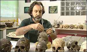 [ image: Walter Neves has measured hundreds of skulls]
