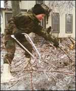 [ image: Sonja Watson cuts firewood from branches brought down in the ice storms]