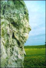 [ image: A face carved on an Avebury standing stone]
