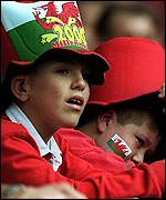 [ image: Two young Welsh fans look on in agony]