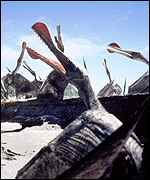 [ image: The giant Ornithocheirus is shown calling to a mate]
