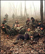 Chechnya's huge beech forests are a refuge for rebel fighters
