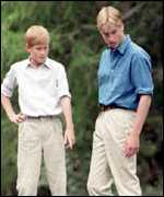 [ image: Princes William and Harry]