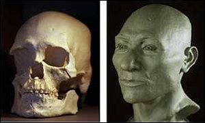 A reconstruction from the skull of Kennewick Man