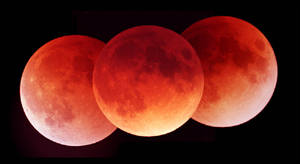 Three phases of the lunar eclipse (Barnes)