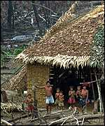 [ image: A Yanomami Indian family home near the edge of the fires]