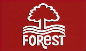 image: [ Nottingham Forest: Still top of the tree ]