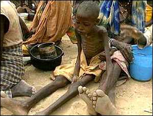 http://news.bbc.co.uk/olmedia/660000/images/_663994_hunger.jpg
