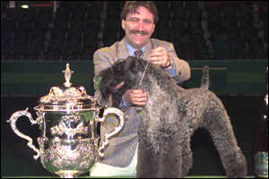 Crufts champion