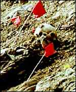 Mass grave pic