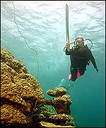 Wendy Craig Duncan tests the design of the underwater torch