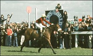 Red Rum - the only winner of three Nationals