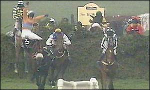 image: [ Horses and jockeys can expect no mercy from Aintree's fences ]