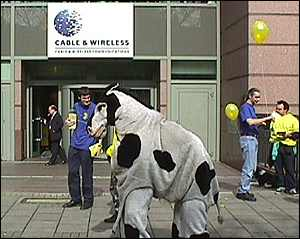image: [ Consumers say neigh to being charged for local calls ]