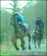 [ image: Preparation on the gallops will not prepare horses for the massive Aintree fences]