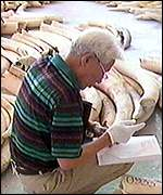 Cites permits one-off sale of ivory to Japan