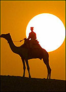 man on camel at sunset