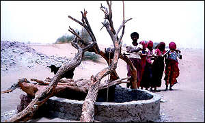Farmers using a dead tree and a pulley try to retrieve water from an almost dry well