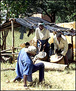 Settlers on Zimbabwean farm
