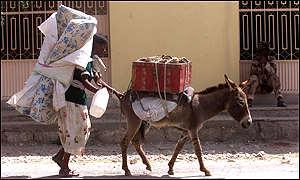 Eritrean civilian fleeing fighting