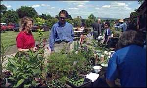 parents buying plants at school fund-raising