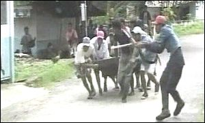 Fighting in Moluccas street