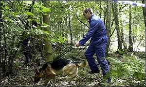 'Human remains' dogs scour woodland