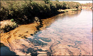 Oil in the Barigui River