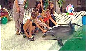 Deaf children play with one of the dolphins at the rehabilitation centre in Yevpatoriya