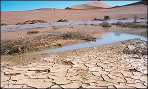 Drought in Namibia (BBC)
