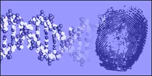 More than 750,000 DNA samples are already held on a database