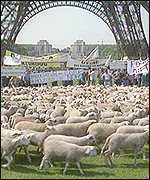 French famers' demo in Paris