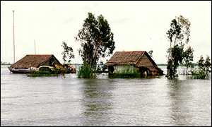 The roofs of flooded houses emerge from flood waters in Tam Nong