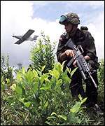 Anti-Narcotics police keep guard in a coca field as a plane fumigates the crop close to Tumaco