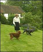 Barbara Castle walks her dogs in a field outside her home