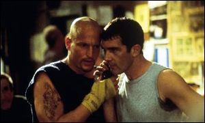 Boxers Harrelson and Banderas
