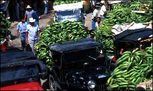 Lorries loaded with bananas in Colombia