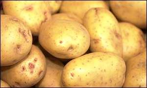 BBC News | SCI/TECH | GM 'mashed potato' revealed
